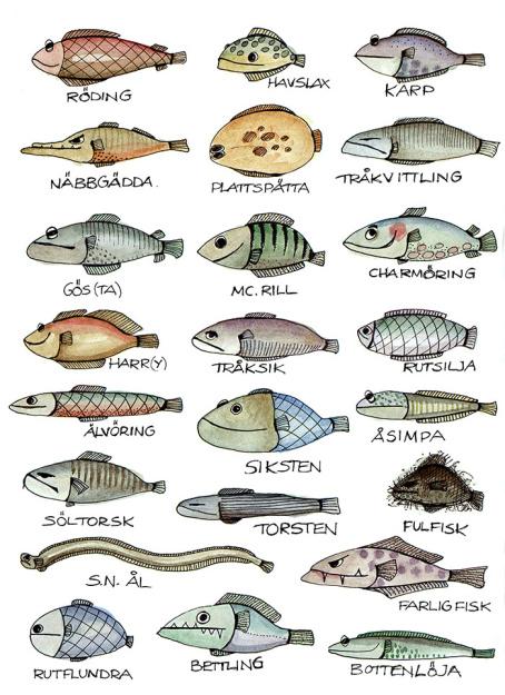 fiskaffich